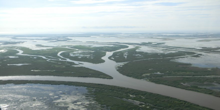 Study finding deltas help in reducing the impact of river floods