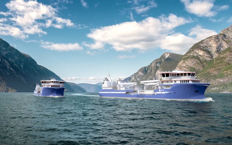 Sefine Shipyard to build two large live fish carriers for DESS Aqua