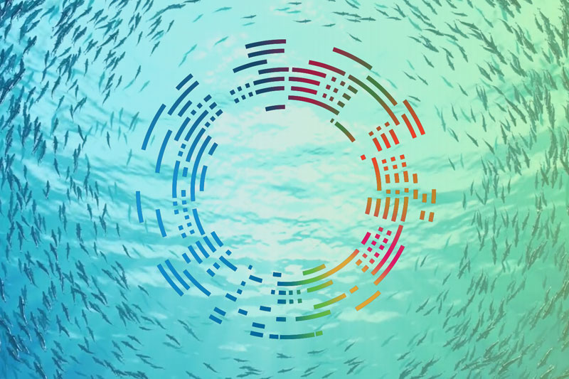 14 Ocean Panel nations to work for transforming ocean economy