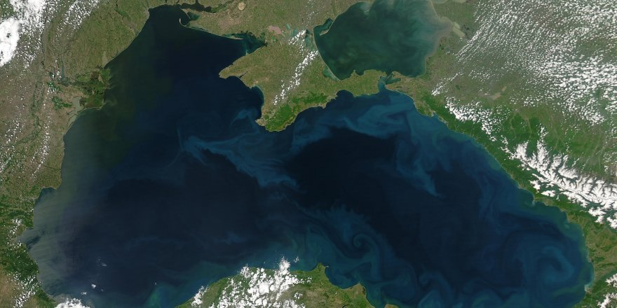 Black Sea fish migrate opposite way due to global warming