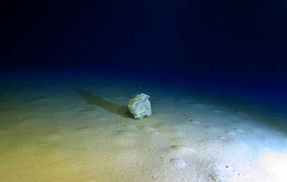 Researches review materials lying on the seafloor