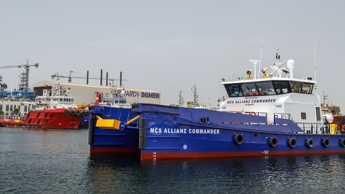 Abu Dhabi Ports and Allianz Marine to work together for offshore logistics