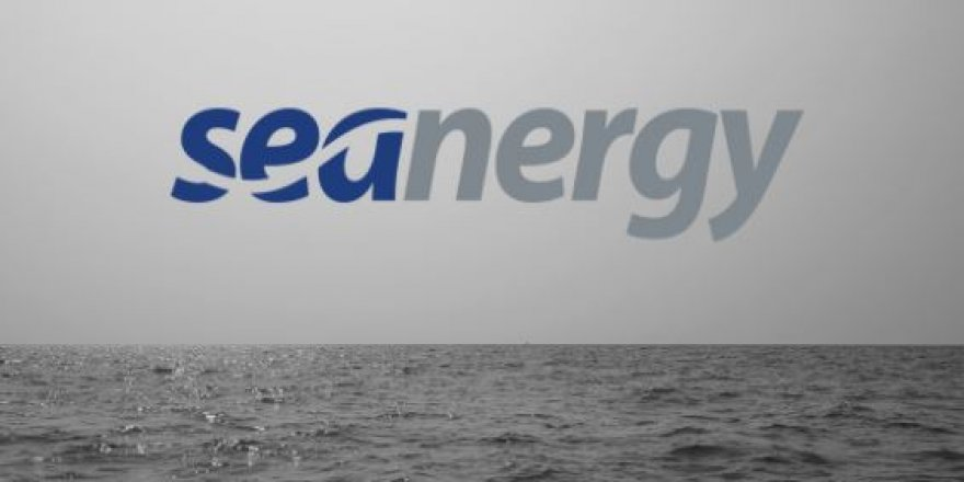 Greek capesize bulker owner Seanergy buys 12 secondhand capesize vessels
