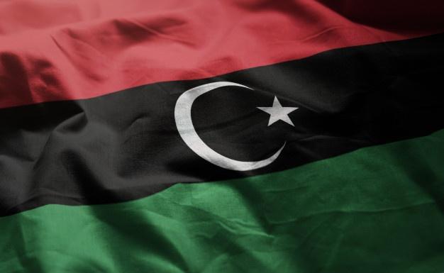 IOM: Libya holds 340 irregular migrants on Mediterranean Sea