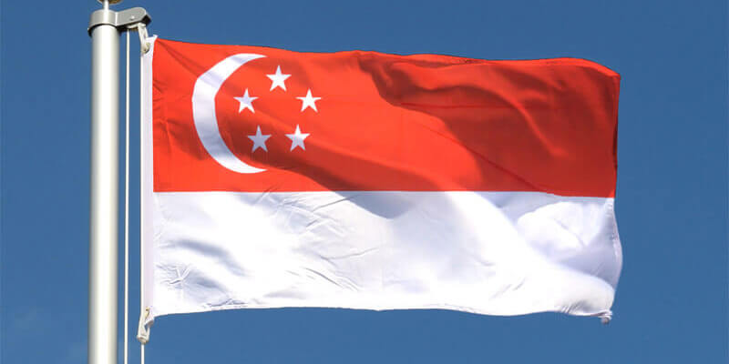 Singapore's first LNG bunkering vessel begins commercial operations