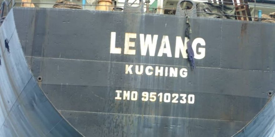 Cargo vessel grounded in a protected marine area, Indonesia