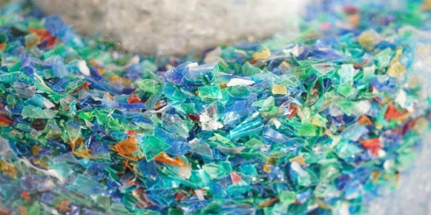 Microplastics are rising across the Mediterranean Sea