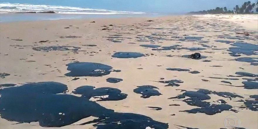 Oil spill threatens Brazil's coral reef