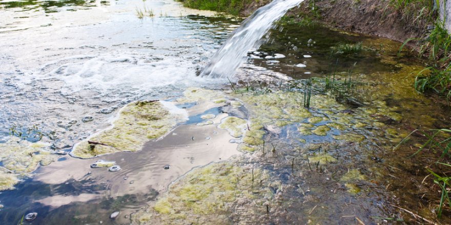 400m gallons of untreated sewage dumped into sea