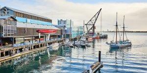 New Zealand extends cruise ship ban
