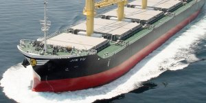 Diana Shipping signed time charter contract with Koch Shipping