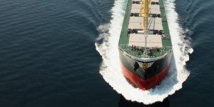 Chinese dry bulk owner Jinhui Shipping sells ageing supramax