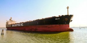 Diana Shipping inks time charter contract with Tongli Shipping