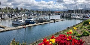 Port of Bellingham aims to reduce greenhouse gas emissions by 86%