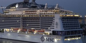 MSC Cruises is ready to fight illegal wildlife trade